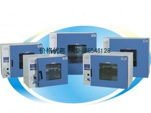 上海一恒DHG-9013A电热鼓风干燥箱